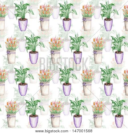Seamless pattern of the doubly tulips in a bucket and spathiphyllum painted in watercolor on a white background