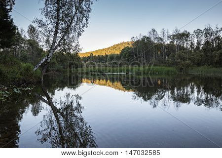 Evening on the small forest lake .