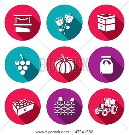 Trade, Floriculture, Apiary, Macaroni Vegetable Canning Gardening Farm Transportation
