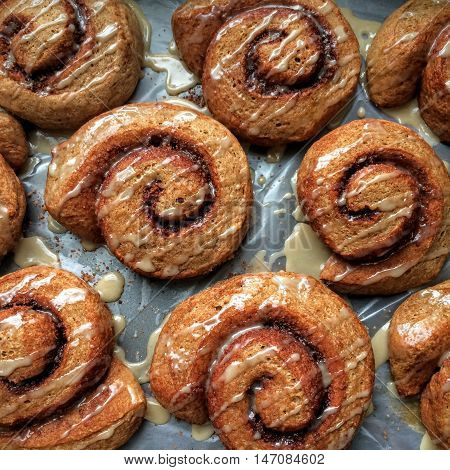 Whole wheat vegan cinnamon buns drizzled with glaze, baked with 100% whole grain flour, fresh out of the oven on a baking sheet.