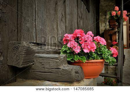 porch of alpien house with Red geranium flower in pot