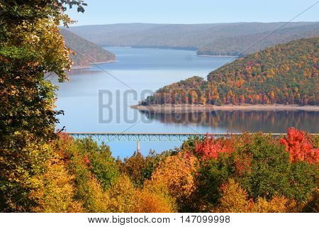 Fall foliage in Allegheny national forest Pennsylvania