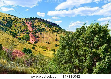 Rocky Mountain Foothills with grasslands and Juniper Trees taken at Red Rocks Park, CO