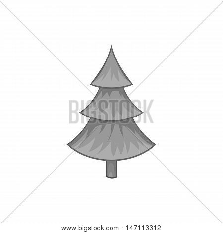Fur tree icon in black monochrome style isolated on white background. Plants and nature symbol vector illustration