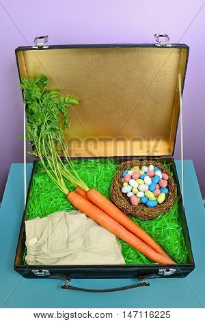 Fun concept image for what the Easter Bunny packs when he's going on vacation. Craft suitcase box includes khaki shorts fresh carrots and speckled eggs on a nest. Interior of suitcase was spray painted in metallic gold.