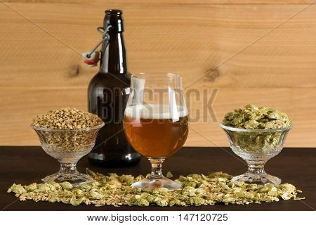 A goblet of beer, small growler, hops and malts
