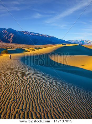 Woman in striped shirt and straw hat  photographing sand waves. Bright sunny morning in a picturesque part of Death Valley, USA. Mesquite Flat Sand Dunes