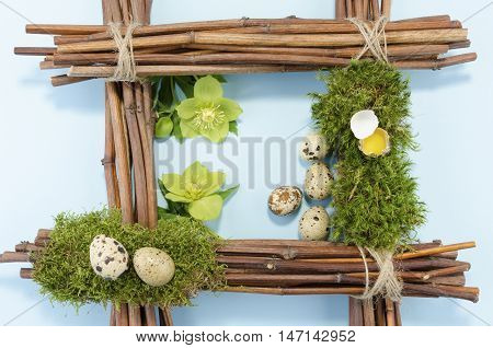 Easter frame with six quail eggs and two hellebore flowers