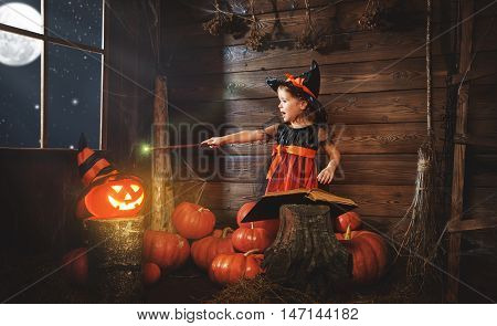 Halloween. child little witch with magic wand pumpkin Jack and magical book of spells in the old hut