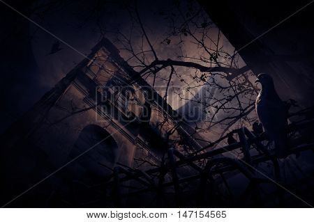 Seagull bird sit on old fence over grunge castle dead tree bird fly moon and cloudy sky Spooky background Halloween concept