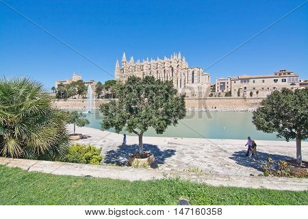 La Seu Cathedral And Green Grass Space