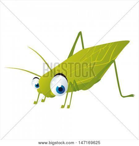 vector cartoon cute animals. Funny insects. Katydid