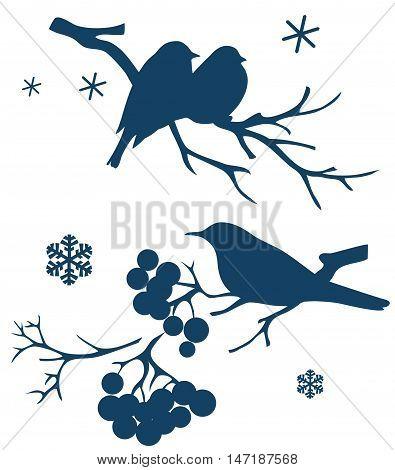 Winter birds on branch of tree. Vector decorative silhouette