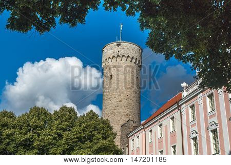 Pikk Hermann Tower in the city of Tallin Estonia