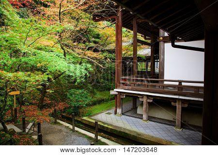 Eikando Temple In Autumn