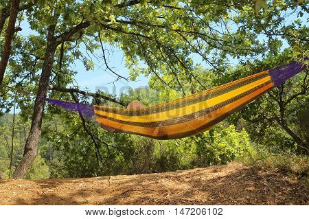 Person resting in hammock with yellow stripes hung between sun dappled trees on a sunny day