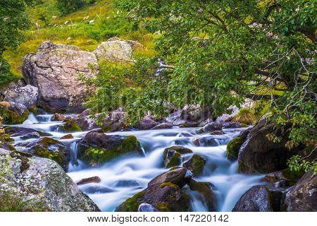 Chiare fresche dolci acque in un rio montano