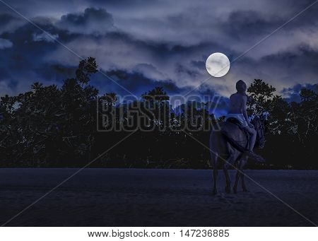 Dark moonscape photo collage dreamy scene with young woman riding a horse against tropical vegetation and moon in blue cloudy sky background