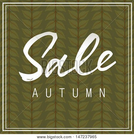 Sale autumn lettering. White sale autumn inscription in two line frame isolated on background decorated with leaves. Calligraphy can be used for postcard, flier, banner