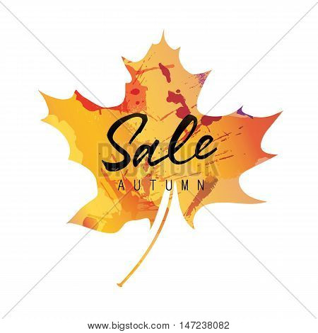 Sale autumn lettering. Sale autumn inscription on colorful maple leaf silhouette. Calligraphy can be used for postcard, flier, banner