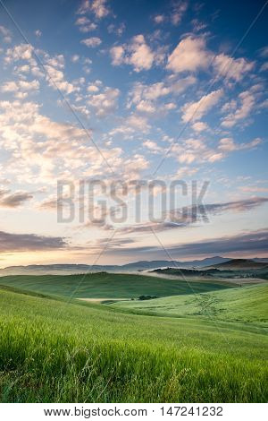 Tuscany rolling hills on sunset. Rural landscape. Green fields a farm with cypress trees and Siena city on background.