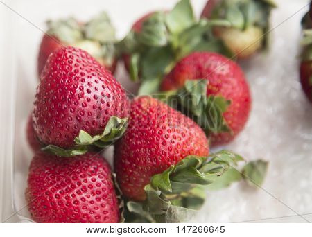 strawberry berries close up in plastic container
