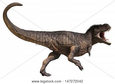 3D rendering of Tyrannosaurus Rex in a dynamic pose, isolated on white background.
