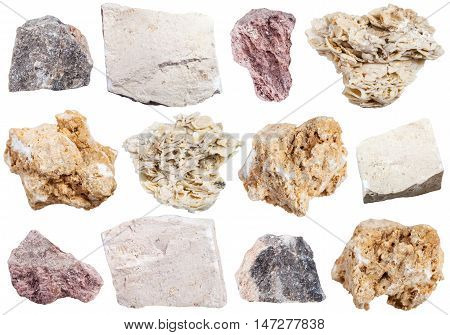 Collection From Specimens Of Limestone Rock