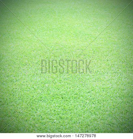 The greensward football field background Green field