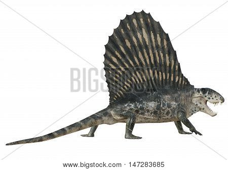 3D rendering of Dimetrodon hissing, isolated on white background.