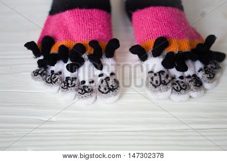Baby feet in warm long multicolored socks with toes white background
