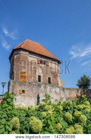 Medieval Tower Wijndragerstoren In The Center Of Zwolle