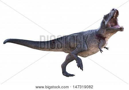 3D rendering of Tyrannosaurus Rex being aggressive, isolated on white background.
