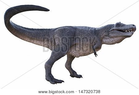 3D rendering of Tyrannosaurus Rex tail attack, isolated on white background.