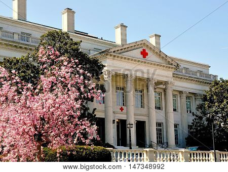 Washington DC -April 10 2014 : The American Red Cross Building on 17th Street NW with flowering pink Magnolia tree