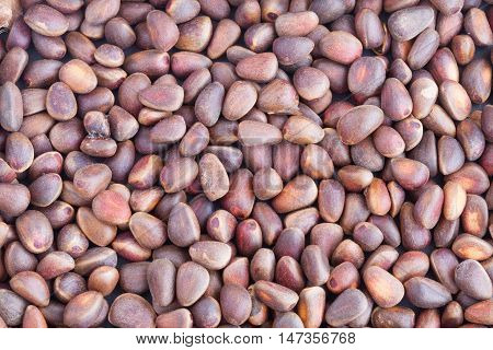The Pine nuts in the shells. Background.