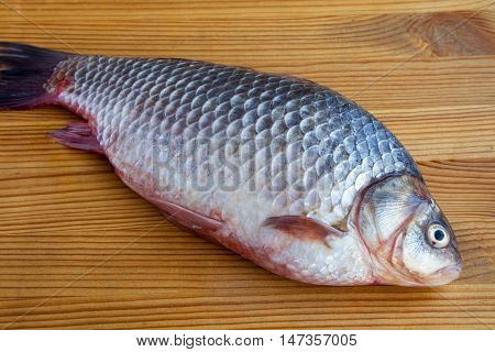 Fresh crucian fish on the wooden table