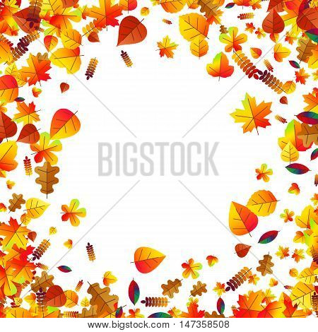 Autumn leaves scattered background with oak, maple and rowan
