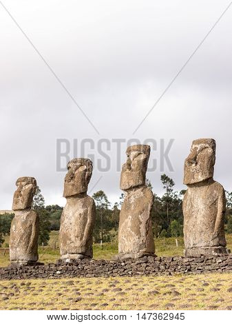 Four moais seen in the Ahu Akivi Easter Island