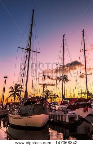 Sailing boats docked at the Ala Wai Harbor at sunset. Ala Wai Yacht Harbor is the largest yacht harbor of Hawaii situated between Waikiki and downtown Honolulu in Oahu Hawaii.
