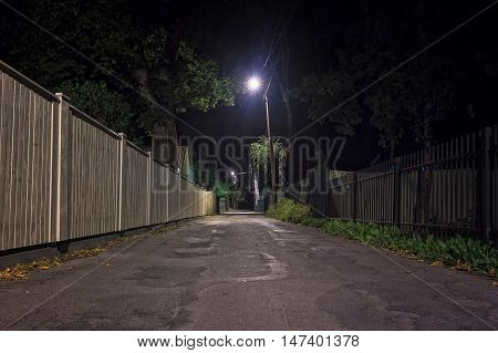 Autumn Night In Nomme