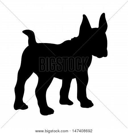 bull terrier dog vector illustration black silhouette