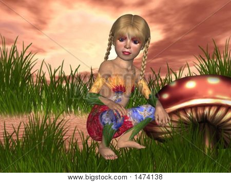 Mushroom Mornings