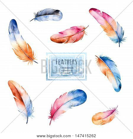 Watercolor collection with 8 handpainted colorful  feathers.