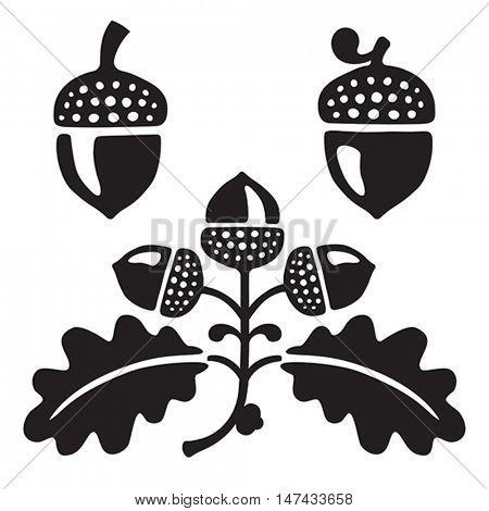 Black and white stylized illustration of acorns and oak leaves. Isolated on white background.