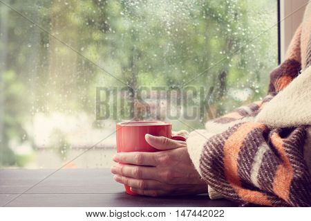 big red mug in the hands thrown over with a warm blanket against the window with rain drops / warming drink at home