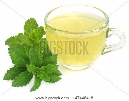 Herbal tea in a cup with stevia and mint leaves over white background