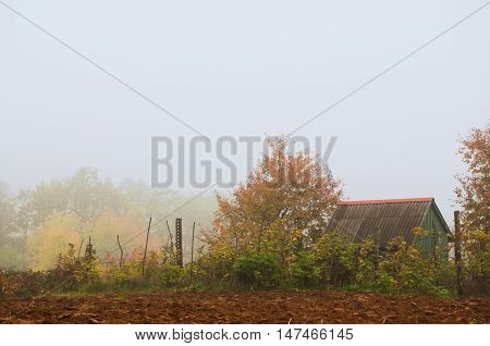 Autumn landscape. Cabin in the woods.Cottage in autumn forest wrapped in mist.