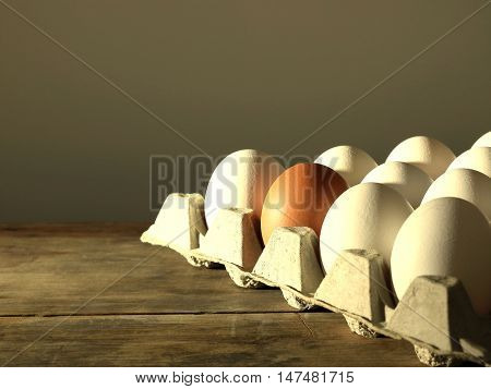 Carton of White Eggs with One Brown Egg