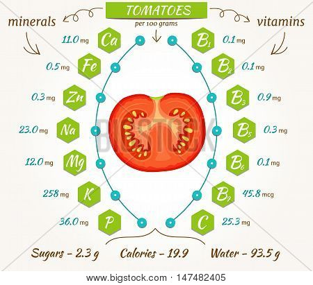 Tomatoes infographics nutrition facts calories and analysis. The content of minerals and vitamins in raw fruits of tomato. Flat style vector illustration.